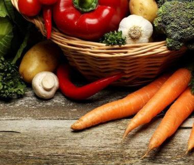 verdure e ortaggi per cani