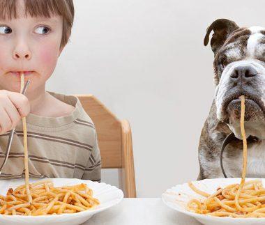 cibi che puoi condividere con il cane